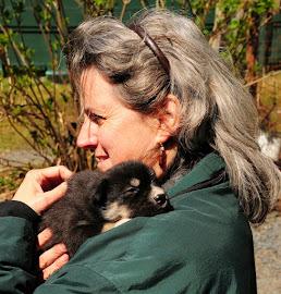 Puppy Cuddling in Seward, Alaska