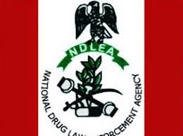 We Received A Formal Extradition Request For Kashamu – NDLEA