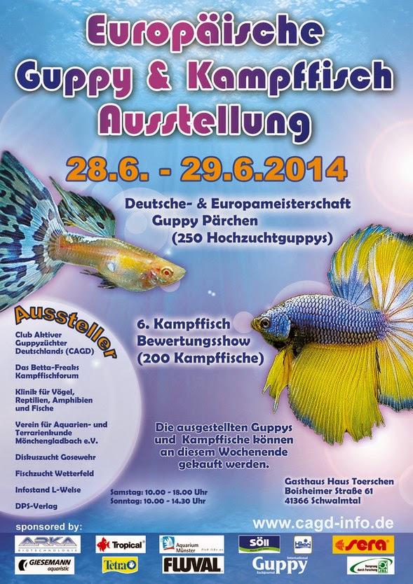 Manche de Championnat d'Europe de Guyppy - Allemagne 2014