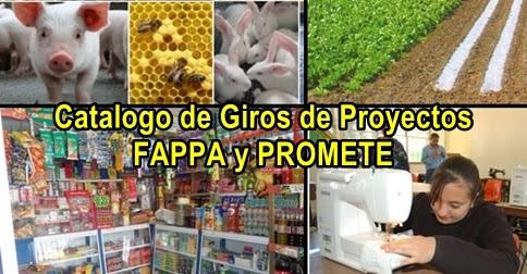 Catalogo de Giros FAPPA y PROMETE