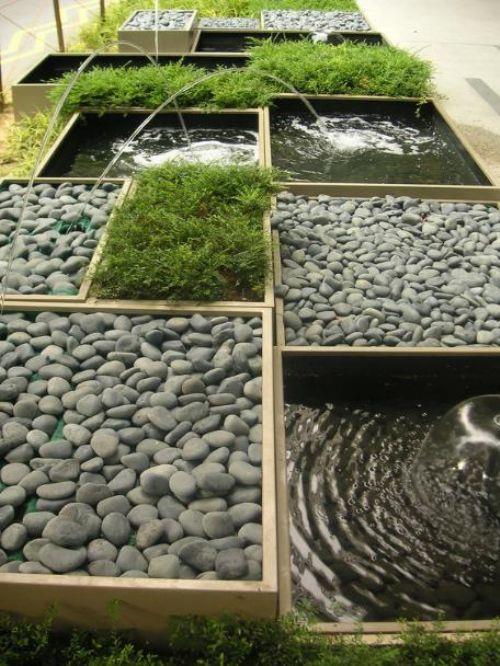 Hogar y jardin plantas carnosas en todo lugar - Hogar y jardin castellon ...