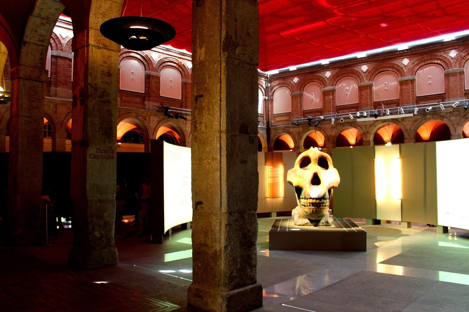 Museo Arqueológico de Alcalá de Henares