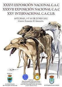 Cartel de las Exposiciones Nacionales e Intenacional de Asturias 2012