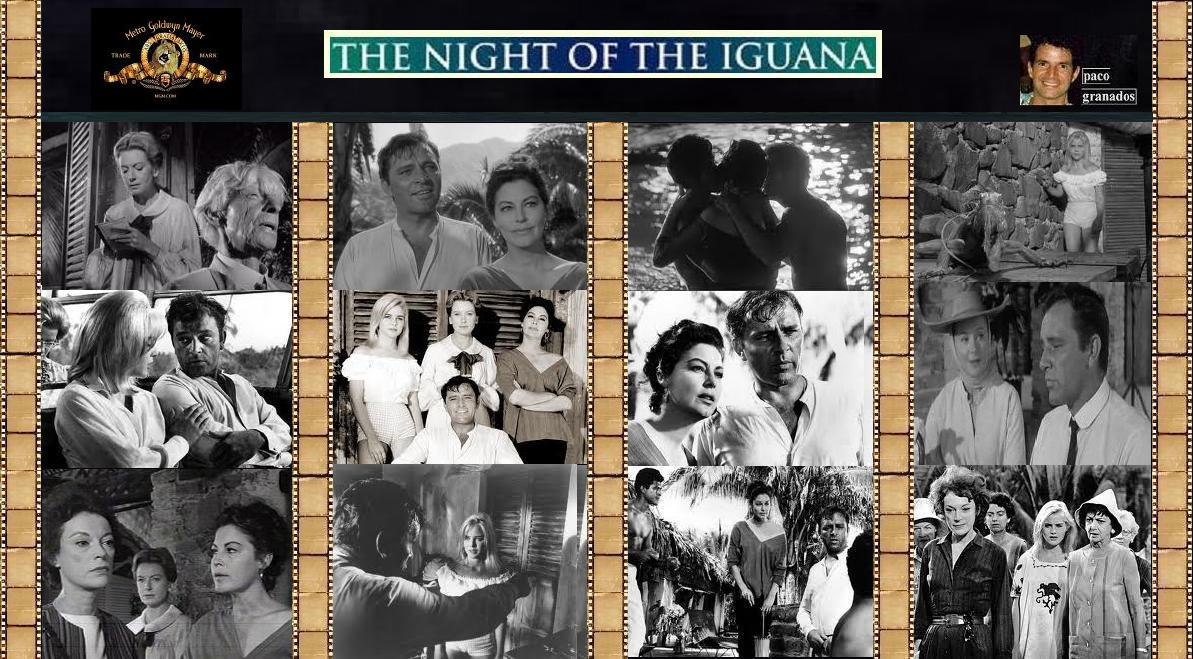 an analysis of the night of the iguana by tennessee williams Get breaking news and the latest headlines on business, entertainment, politics, world an analysis of the night of the iguana by tennessee williams news, tech, sports, videos and much more from aol 25-8-2017.