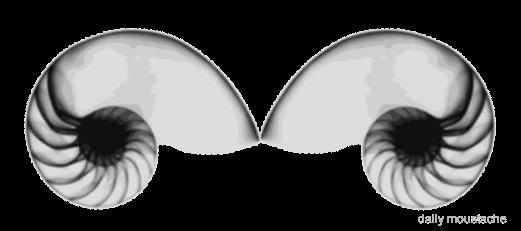 Fu Manchu Mustache Clip Art (this is naut a moustache)