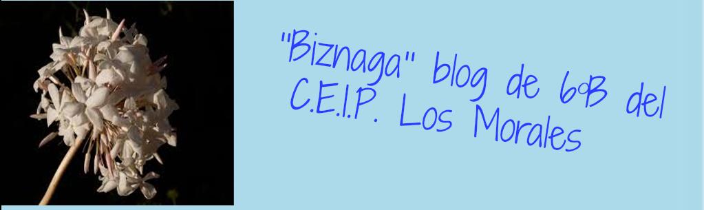 """""""BIZNAGA"""" Blog de 6ºB del C.E.I.P. Los Morales"""