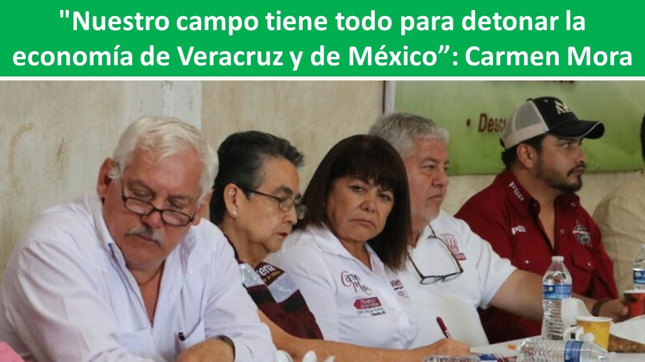 """la economía de Veracruz y de México"""": Carmen Mora"""