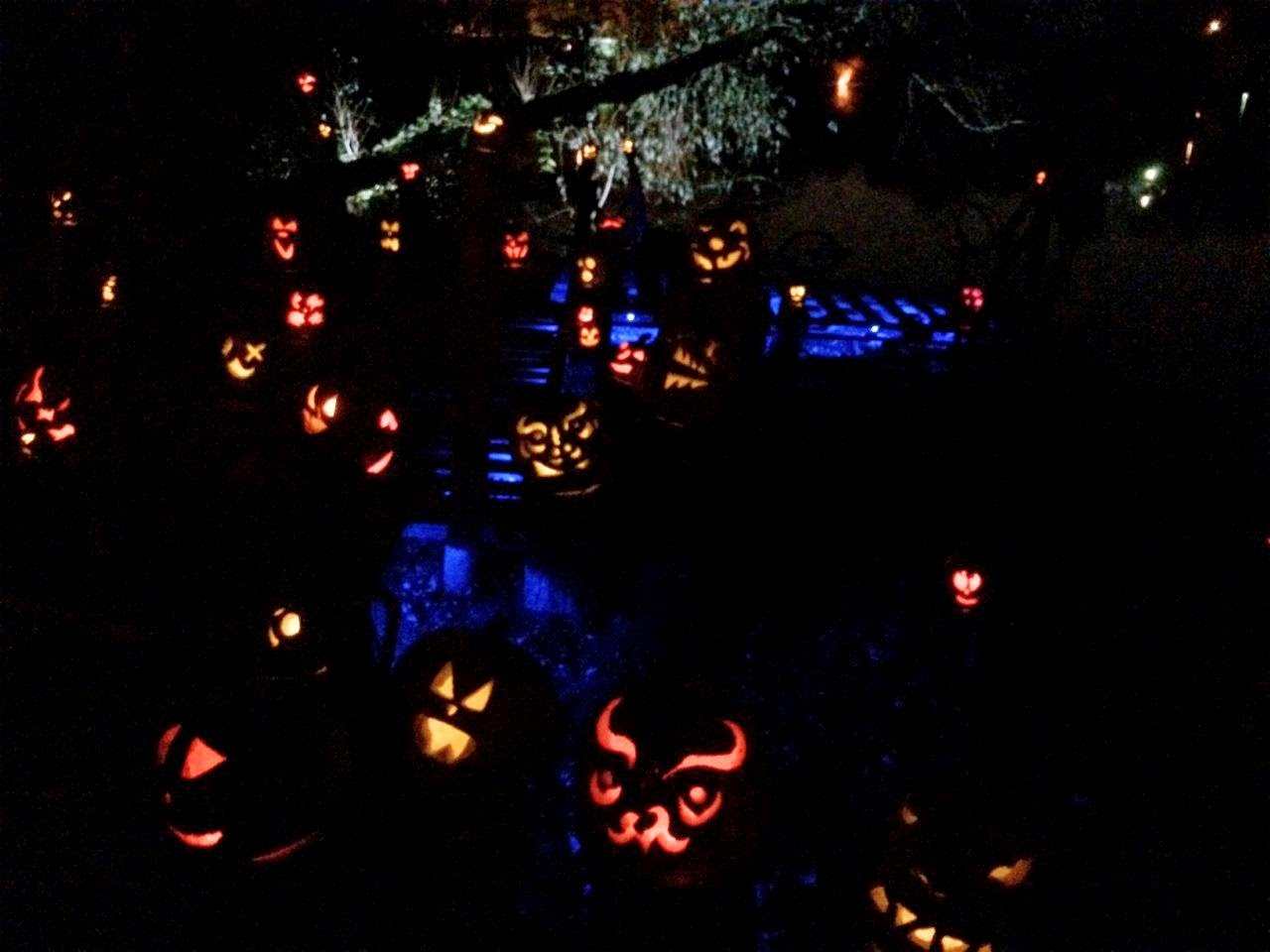 New England Fall Events - Jack-o-Lantern Spectacular Roger Williams Zoo Providence