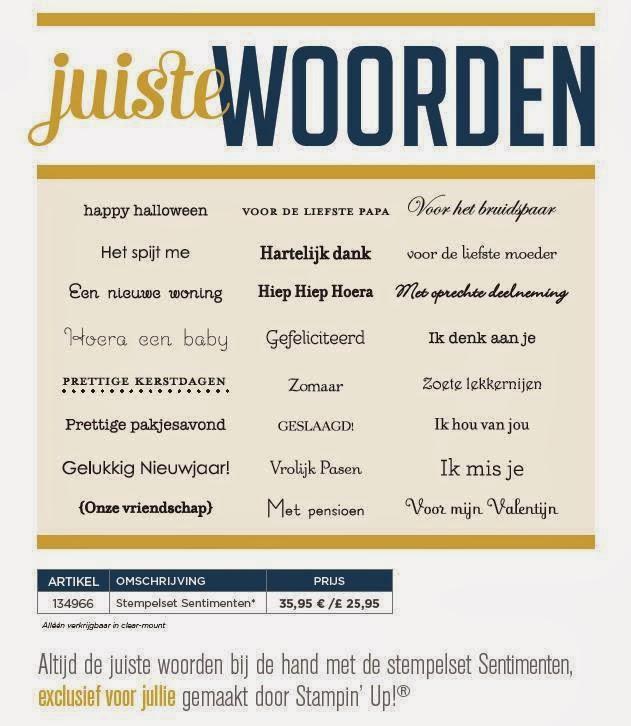 Juiste woorden - Nederlandse teksten