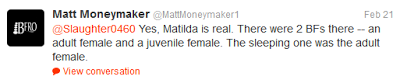 Matt Moneymaker Backs Matilda
