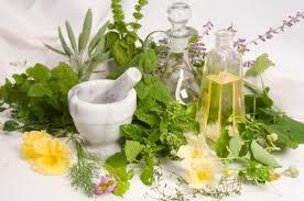 Herbal Alami Obat Berbagai macam Penyakit