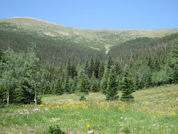 The Torres plane crashed on the other side of this mountain ridge in Southern Colorado