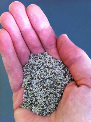 Half a hand full of Chia seeds