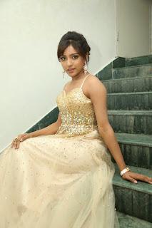 Vithika Sheru in Ravishing Sleeveless Deep Neck Golden Gown at Paddanandi Premalo Mari Movie Audio Launch