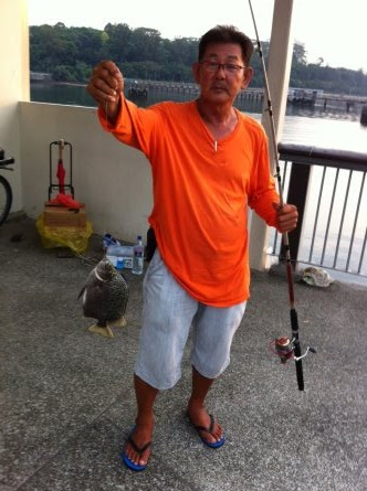 Scat or Kim Kor 金鼓, 金錢魚 weighing about 600gm Caught by Ah Tan at Woodland Jetty