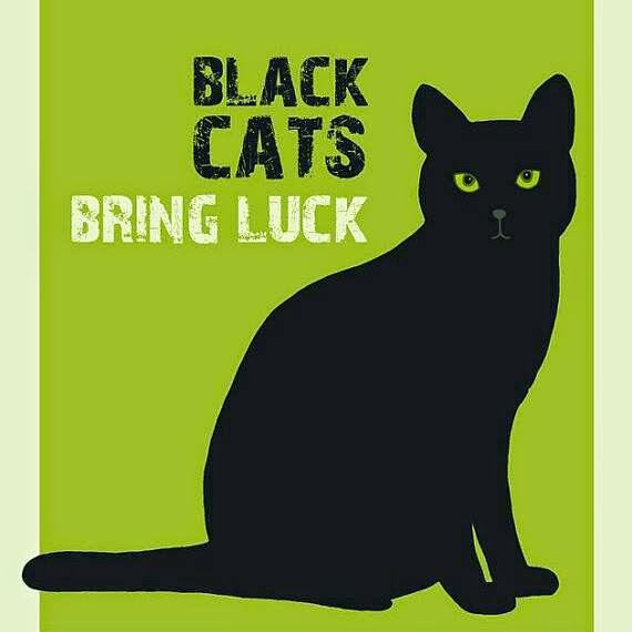 I gatti neri portano fortuna - Souvenirs of a Black Cat