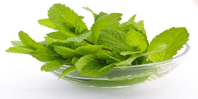 Crushed Mint For Dark Circle