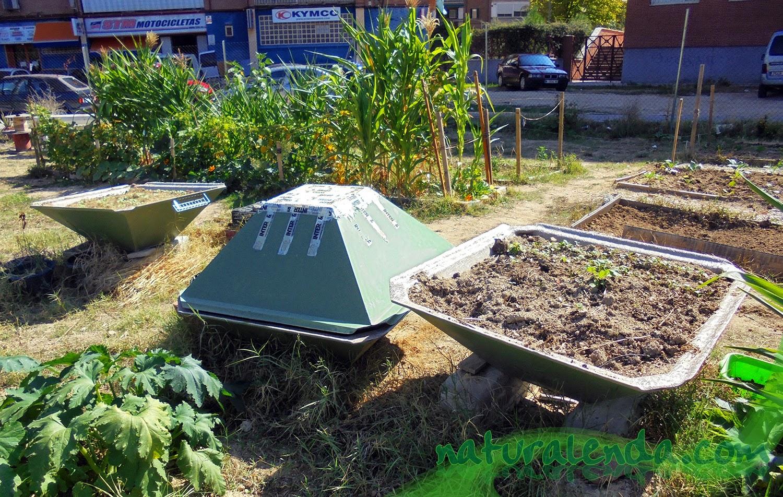 jardineras curiosas