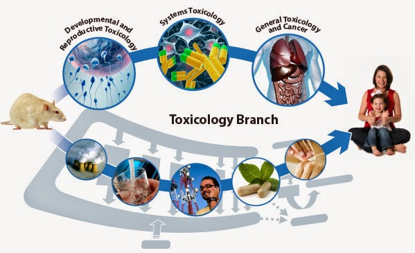 General Toxicology Services