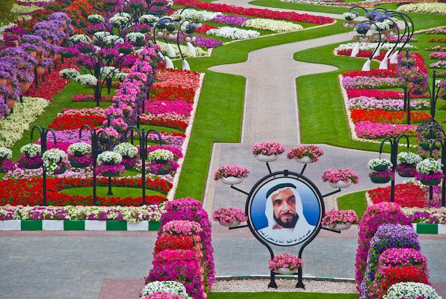 من اجمل حدائق العالم : حديقة العين بارادايس من الإمارات العربية DSC_6163.jpg