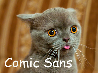 Cats and Fonts - Funny Pics
