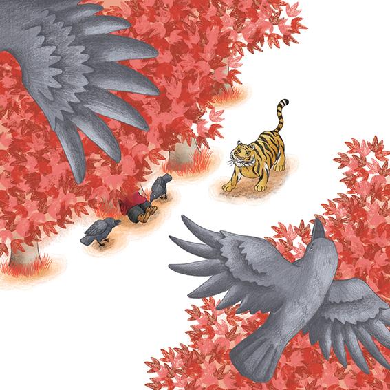 Wei y el pájaro de fuego 19, ¡A contar! Santillana
