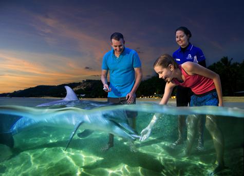 Tangalooma+-+Dolphin+Feeding+-+2010-11_W