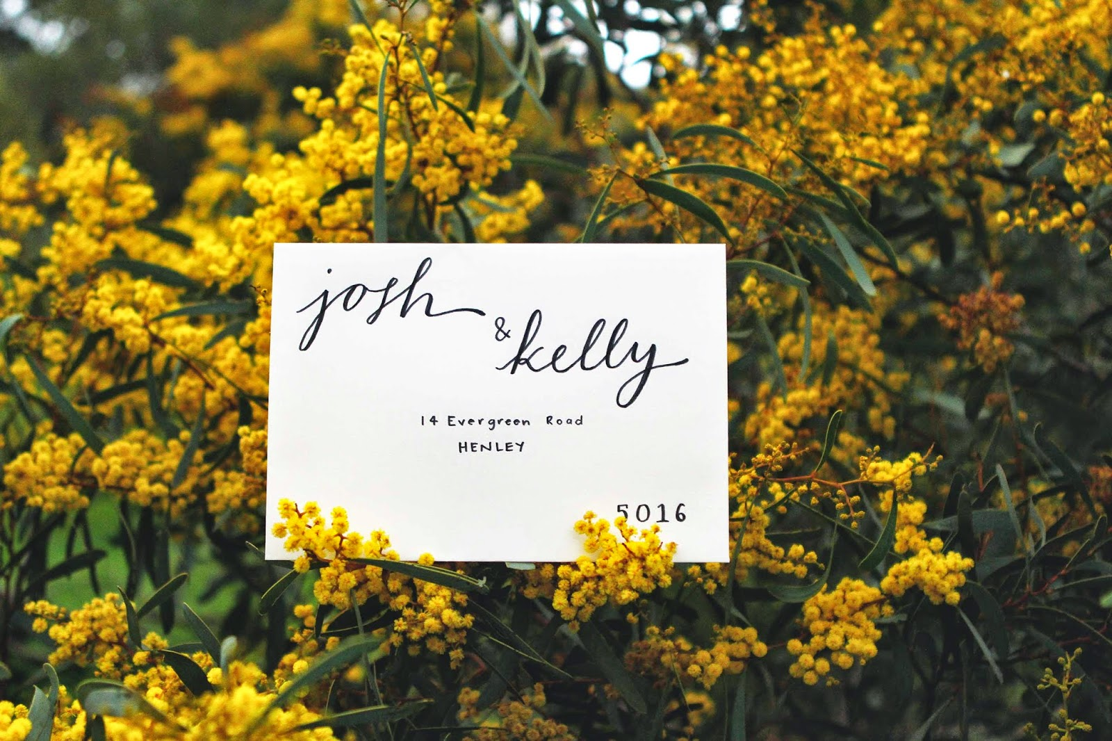 handwritten calligraphy envelopes adelaide wedding invitations melbourne sydney sail and swan