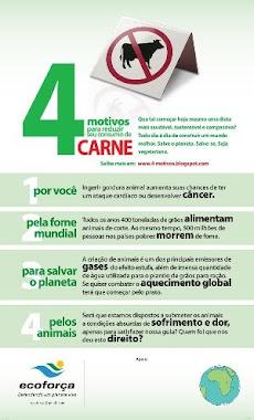 4 motivos para reduzir o consumo de carne.