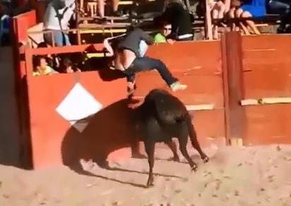 Se la Llevo el Toro