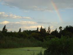 Primeiro arcoiris de 2012