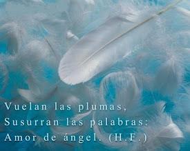 Las señales de los ángeles.