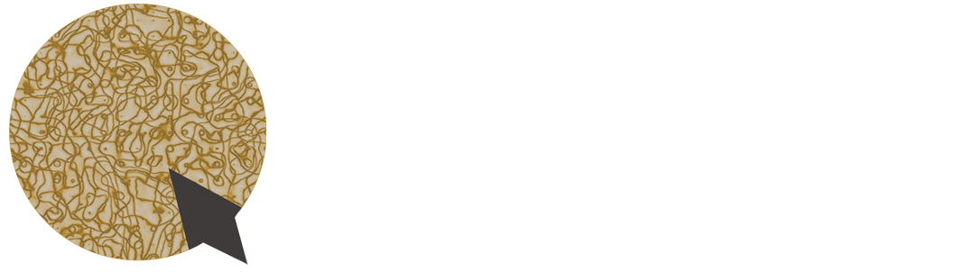 Qbaya.com - Inspirasi Wanita Indonesia