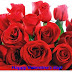 3D-Animated Valentine,s Day Greeting Cards Wallpapers-Valentine Day Heart-Love Card Photos-Pictures