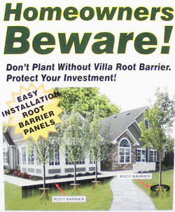 install root barriers now to prevent damage in the future.