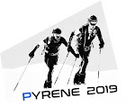 Pyrene 2019