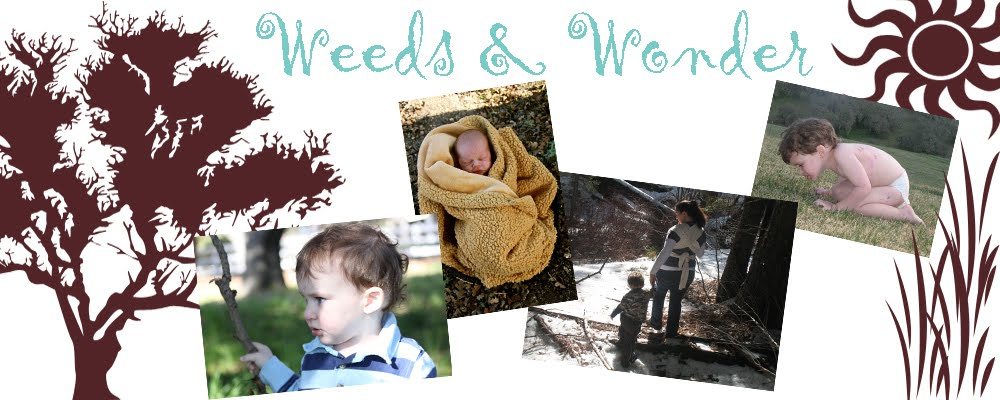 Weeds and Wonder