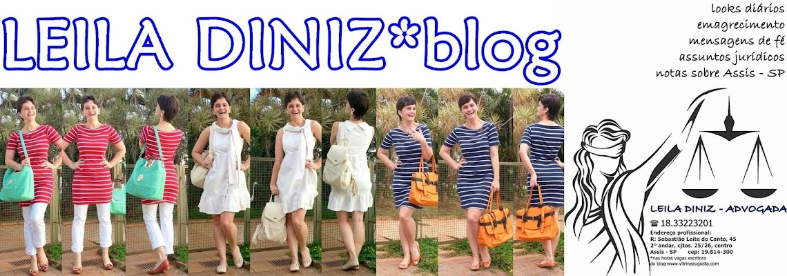 leila diniz *blog