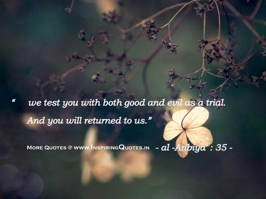 Quran Quotes | Quran Quotes