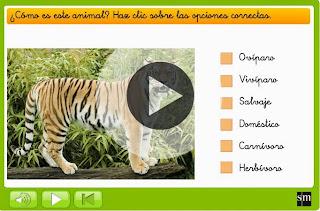 http://www.primaria.librosvivos.net/1epcmcp_ud5_rep.html