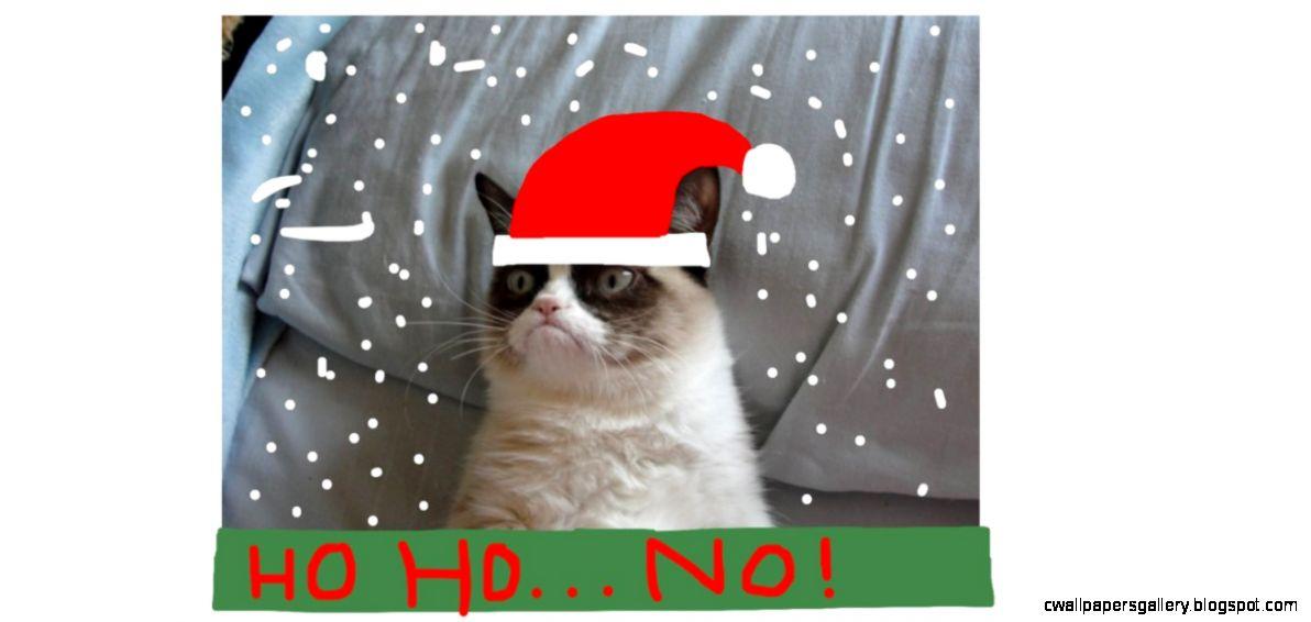 Grumpy Cat Merry Christmas | Wallpapers Gallery