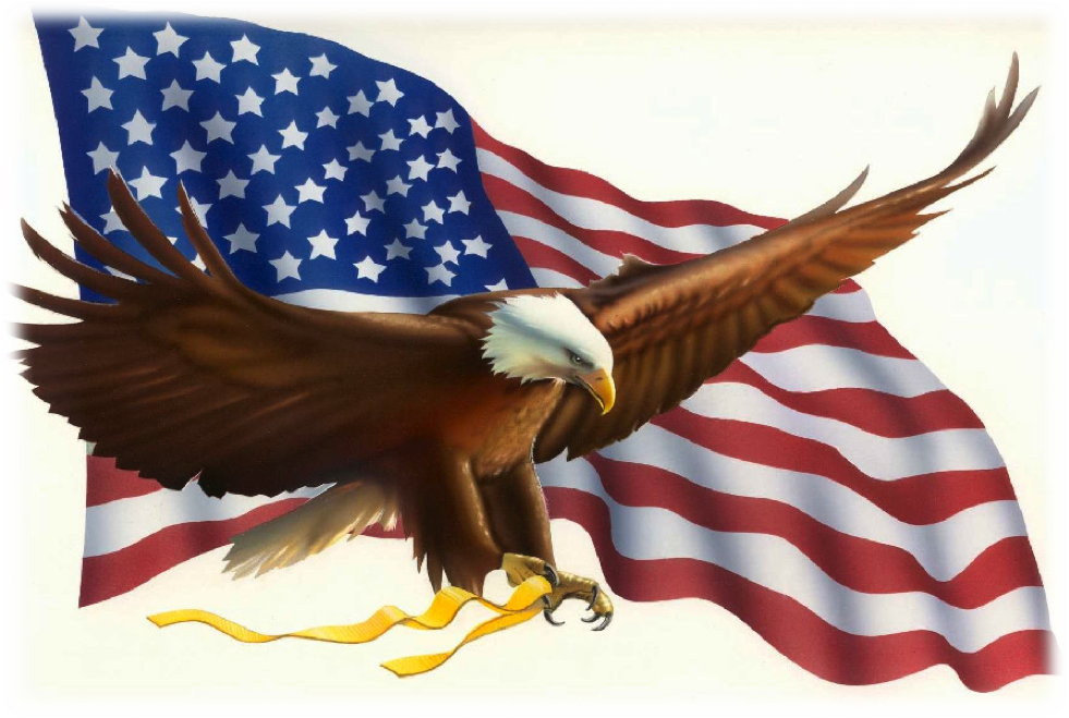 Good Morning America Eagles : In the leafy treetops birds sing quot good morning my