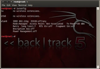 check Network status on Backtrack