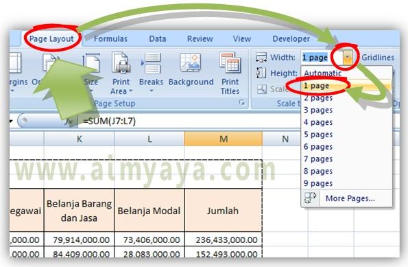 Gambar: Cara membuat hasil cetak menjadi 1 halaman/kertas melalui dialog Page Setup di Microsoft Excel