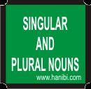 SINGULAR AND PLURAL NOUNS [PRACTISES]