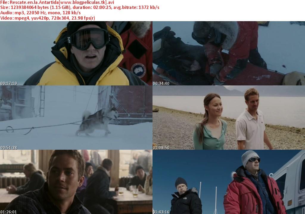 rescate en la antartida espa241ol latino dvdrip down moviez