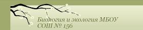 "Сайт ""Биология и экология МБОУ СОШ 156"""
