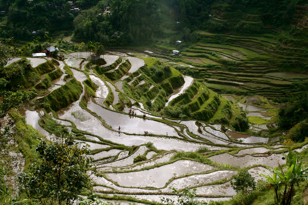 8th wonder of the world banaue rice terraces in ifugao for What are terraces