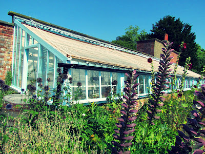 greenhouse, Down House, Charles Darwin, flowers, visit, English Heritage