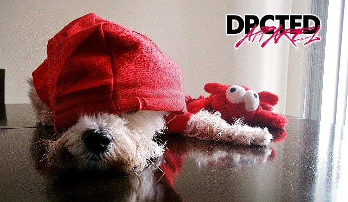 DPCTED Apparel Pet Clothes